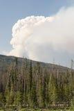 Beaver Creek-Feuer in zentralem Nordcolorado Stockbild