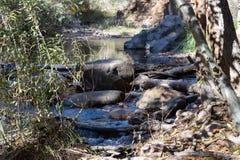 Beaver Creek w Kolorado zdjęcia stock