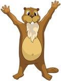 Beaver CREES Royalty Free Stock Photography