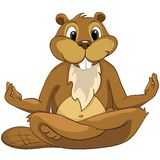 Beaver CREES Royalty Free Stock Image