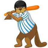Beaver CREES Royalty Free Stock Photos