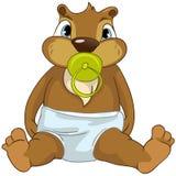 Beaver CREES Stock Photo