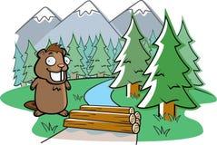 Beaver Dam Royalty Free Stock Image