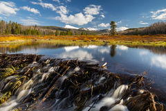 Beaver dam in the Uinta's. This photo was taken off of the Mirror Lake highway in Utah Stock Photo