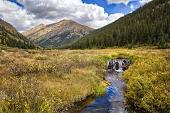 Beaver Damm. Meadow with beaver damm along Independence Pass Road, in autumn. Colorado royalty free stock image
