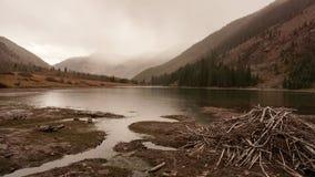 Beaver damn on a cloudy colorado day royalty free stock image