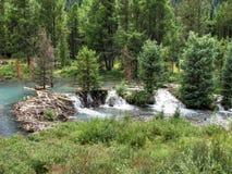 Free Beaver Damn Habitat Royalty Free Stock Images - 37403799