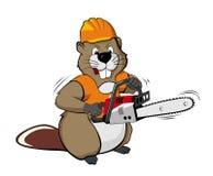 Beaver das Tragen eines Sturzhelms und das Anhalten einer Kettensäge Stockfotos