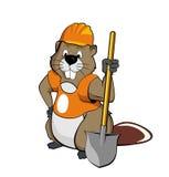 Beaver das Tragen eines Sturzhelms und das Anhalten eines Spatens Stockfotografie