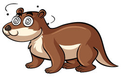 Beaver with dizzy face Stock Image