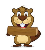 Beaver eating wood. Clipart picture of a beaver cartoon character eating wood Stock Images