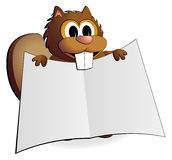 Beaver Explanation. A cute cartoon beaver holds up an open and blank publication Royalty Free Stock Photo