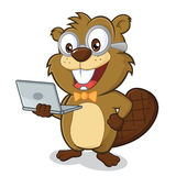 Beaver geek holding laptop. Clipart picture of a beaver geek cartoon character holding laptop Royalty Free Stock Photo