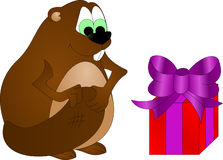 Beaver with a gift Stock Photos