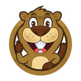 Beaver giving thumbs up in round frame. Clipart picture of a beaver cartoon character giving thumbs up in round frame vector illustration