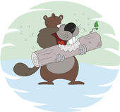Beaver gnawing wood Stock Images