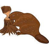 Beaver. Gnaws a tree to build platinum Royalty Free Stock Photography