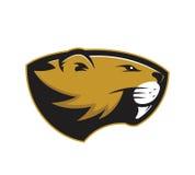 Beaver head mascot Royalty Free Stock Photo