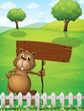 A beaver holding an empty signboard standing near the fence Royalty Free Stock Photos