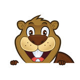 Beaver holding and looking over a blank sign board. Clipart picture of a beaver cartoon character holding and looking over a blank sign board vector illustration