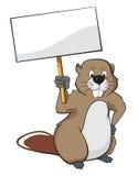 Beaver holding a nameplate stock photo