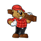 Beaver holding a plank of wood Stock Images