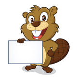 Beaver holding sign. Clipart picture of a beaver cartoon character holding sign Stock Photo
