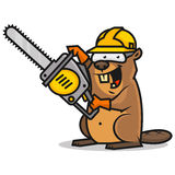 Beaver holds chainsaw Stock Photo
