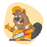 Beaver Holds Saw and Showing Thumbs Up Stock Photos