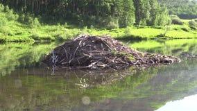 Beaver House on Lake stock video footage