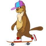 Beaver i CREES Immagini Stock Libere da Diritti