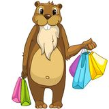 Beaver i CREES Fotografie Stock Libere da Diritti