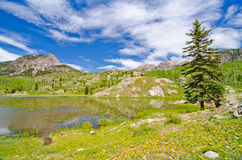 Beaver Lagoon in the San Juan Mountains in Colorado Stock Photo