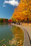 Beaver lake and foliage in autumn colors. royalty free stock photography
