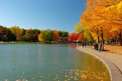 Beaver lake and foliage in autumn colors. stock photo