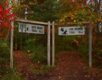 Beaver Lake Nature Center. Baldwinsville, New York, USA. October 27, 2017. Two of the hiking trails at Beaver Lake Nature Center in Baldwinsville, New York Stock Photo