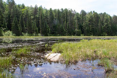 Beaver Lakes, Algonquin Provincial Park 3 Royalty Free Stock Images