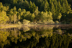 Beaver Loch Royalty Free Stock Images