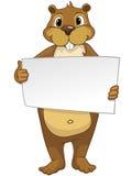 Beaver a los CREES Foto de archivo libre de regalías