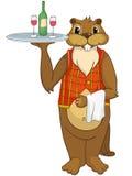 Beaver a los CREES Imagenes de archivo