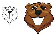 Beaver mascot. Beaver head in cartoon style for sport team mascot design Royalty Free Stock Photography
