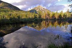 Beaver Pond Royalty Free Stock Images