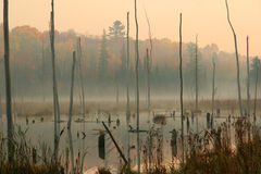Beaver Pond in Autumn. With Fall Colors - Haliburton Highlands, Ontario, Canada Royalty Free Stock Images