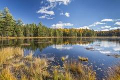 Beaver Pond in Autumn Stock Photo
