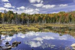 Beaver Pond in Autumn - Ontario, Canada Stock Image