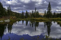 Beaver Pond Reflections royalty free stock image