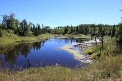 Beaver ponds formed. Beaver ponds form in northern Minnesota Stock Photos