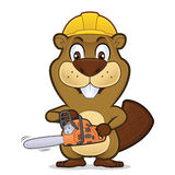 Beaver portare un cappello della costruzione e la tenuta della motosega Fotografia Stock Libera da Diritti