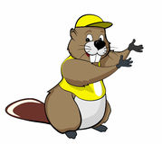 Beaver show (yellow) Royalty Free Stock Photography