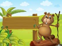 A beaver beside a sign board Stock Photos